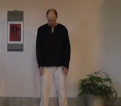 The Basics of Great Qigong Posture