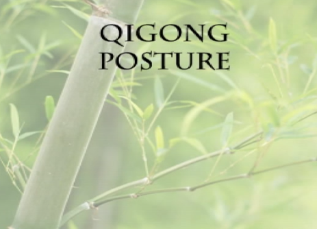 Qigong Seated Posture